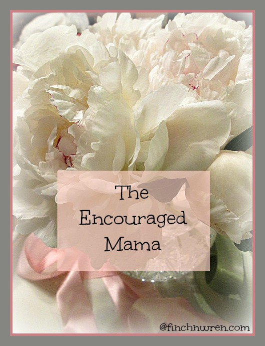 The Encouraged Mama Banner