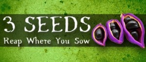 3-seeds-reap-where-you-sow-3_zpswpje7juh