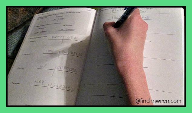Curriculum finchnwren how we used it fandeluxe Gallery